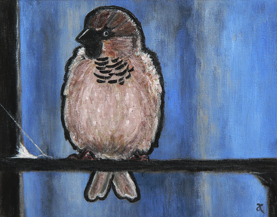 Sparrow – acrylic on canvas, 200 x 255 mm, 2013 In the style of... Celestino Piatti
