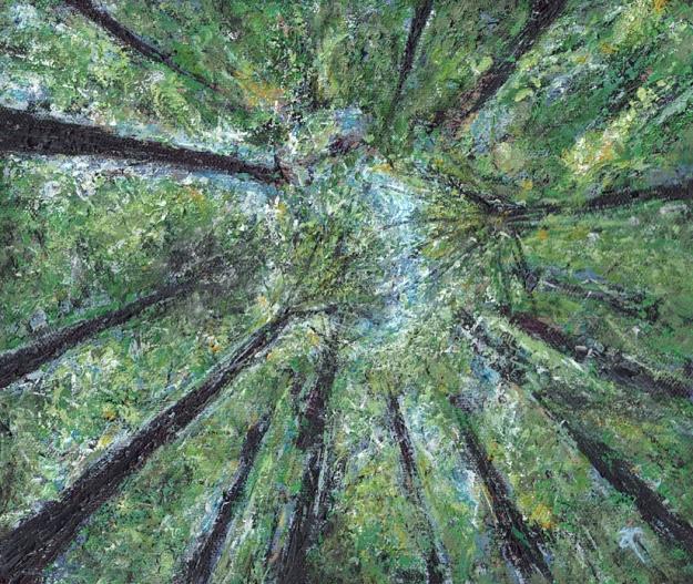 Redwoods – acrylic on canvas, 255 x 305 mm, 2013
