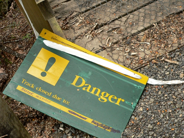 Anna Cull Bridge Danger