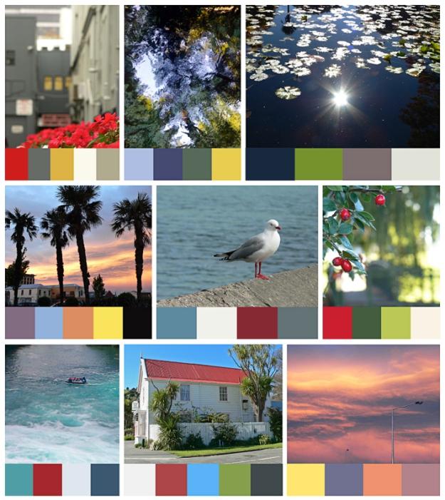 Anna Cull Colour Stories 1