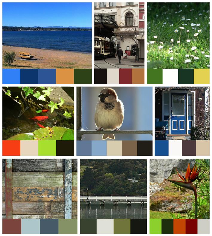 Anna Cull Colour Stories 2