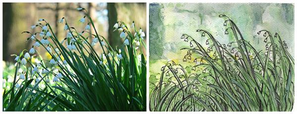 Original photograph and sketch #1