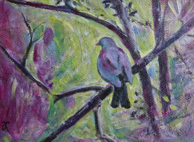"""Kererū Morning"" USD$45 5 x 7 inches (approx. 13 x 18 cm) acrylic on textured card"