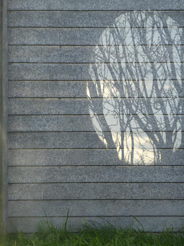 Reflection reflection, 2014