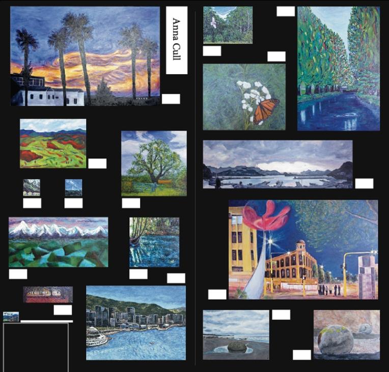Christchurch Art Show exhibition plan