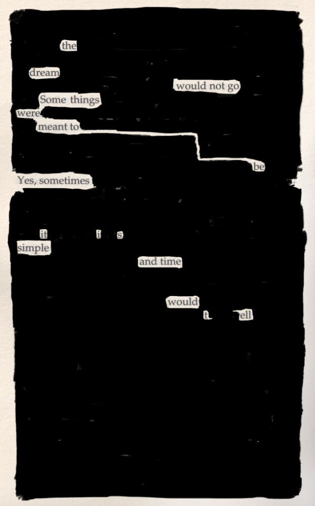 Blackout poem #12